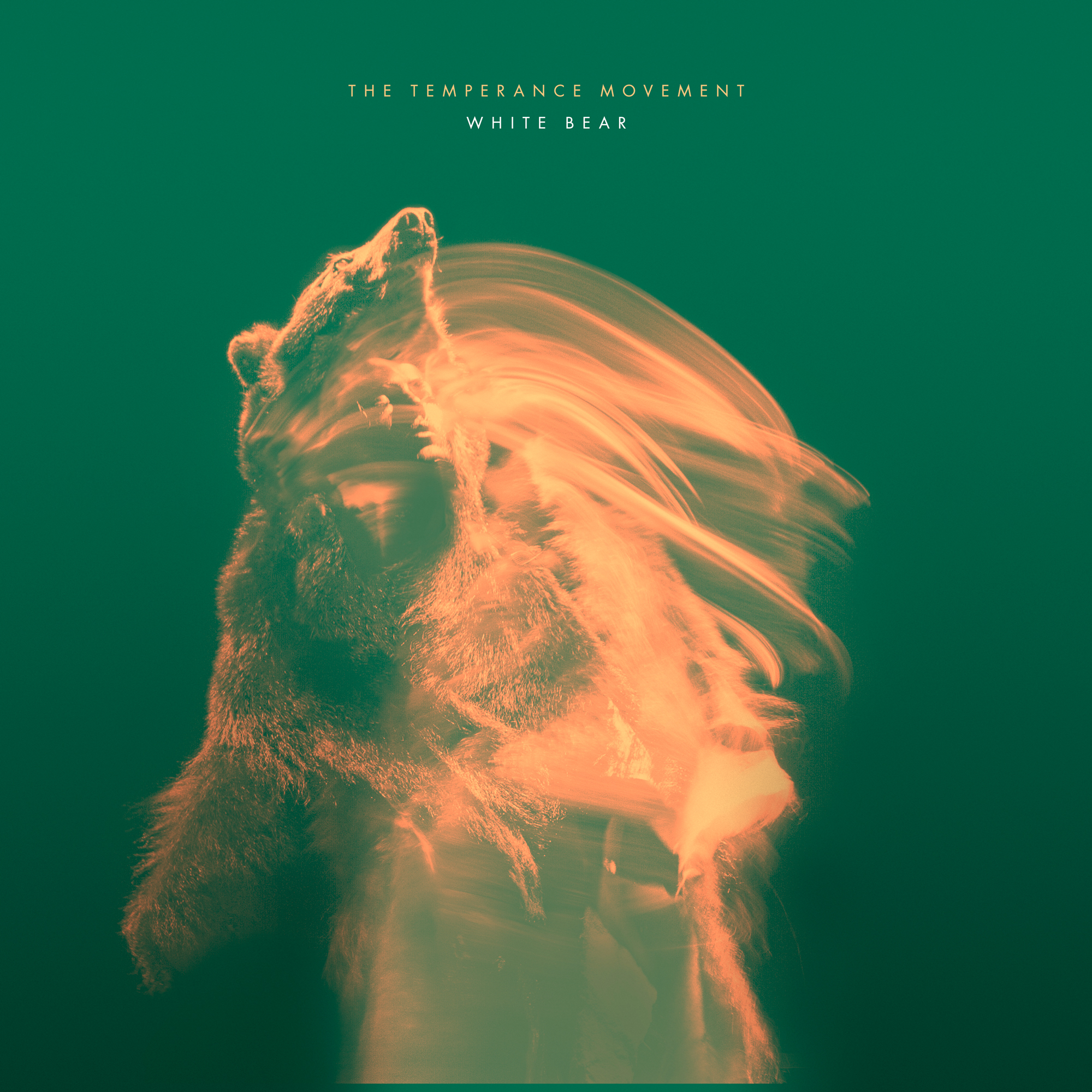 THE TEMPERANCE MOVEMENT * THE STONE FOXES